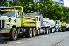 Construction trucks, some yellow, some white, parked in a line u Stock Photography