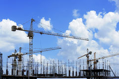 Construction worker. Crane group Stock Images