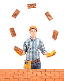 Construction worker juggling with bricks behind a brick wall Royalty Free Stock Photos
