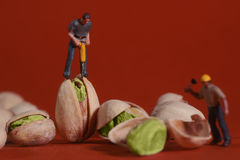 Construction Workers in Conceptual Food Imagery With Pistachio N. Miniature Construction Workers in Conceptual Food Imagery With Pistachio Nuts Royalty Free Stock Images