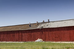Construction Workers Roofing A Barn Stock Photos