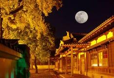 Constructions antiques japonaises la nuit photos libres de droits