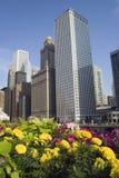 Constructions de Chicago Photo stock