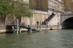 Constructions de ville de Paris de fleuve de Seine Photographie stock libre de droits