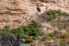 Constructions traditionnelles le long d'une base de falaise Images stock
