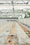 Constructväxthus arkivbild