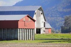 Construções de exploração agrícola rurais estabelecidas Foto de Stock Royalty Free