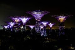 Luz da noite no jardim pela baía Singapura Foto de Stock