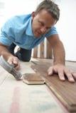 Construtor que coloca o revestimento de madeira Foto de Stock