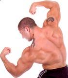Construtor que demonstra o pose da competição Imagens de Stock