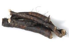 Consuelda; Común; medicinal, raíces Foto de archivo libre de regalías