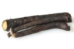 Consuelda; Común; medicinal, raíces Fotografía de archivo