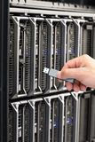 IT Consultant Connect Flash Drive to Blade Server Stock Image