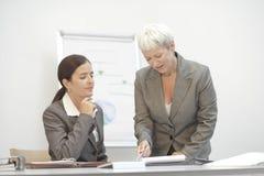 Consultante de negócio sênior Imagem de Stock