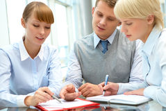 Consultation. Image of business people consulting during paperwork Stock Photos