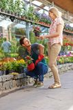 Consultation with florist in retail. Woman is looking for advice at florist in retail for the purchase of flowers stock images