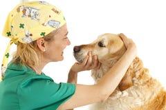 Consultation vétérinaire Photos stock