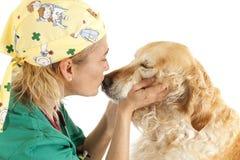 Consultation vétérinaire Images libres de droits