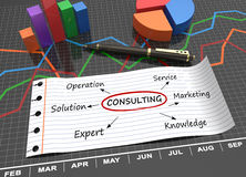 Consulting koncept royalty free stock photos