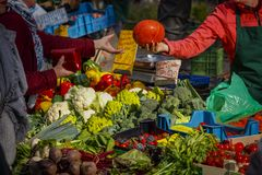 Consumer buying vegetables on the farmers market in Mainz stock images