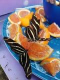 Consumición de las mariposas foto de archivo libre de regalías