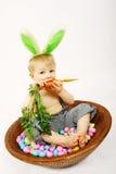 Consumición de una zanahoria Foto de archivo libre de regalías