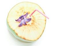 Consumición del coco y orquídea azul Imagenes de archivo