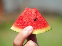 Consumición del melón de agua Imagen de archivo