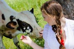 Consumición hermosa y vaca de la muchacha de la mujer joven Fotos de archivo