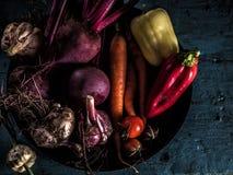 Consumición sana de la cosecha fresca del borscht de los ingredientes de las verduras Imágenes de archivo libres de regalías