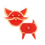 Consumición sana. Pequeños gatos divertidos hechos de las rebanadas del pomelo. Fotos de archivo libres de regalías