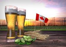 Consumo da cerveja em Canadá 3d rendem Imagens de Stock Royalty Free
