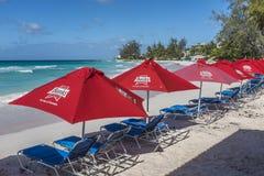 Conta i parasoli Accra Barbados della birra Fotografie Stock