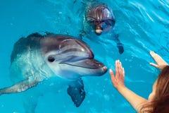 Contact de main de personnes un dauphin Images libres de droits