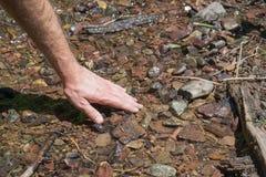 Contact du courant à froid de montagne Image stock