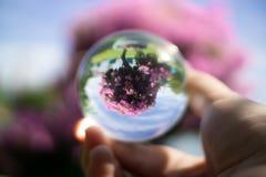 Contact het jongleren met Hand en acrylbal stock afbeelding