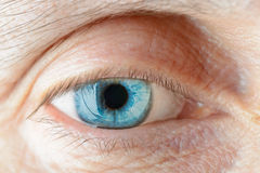 Contact Lens on the Eye stock images