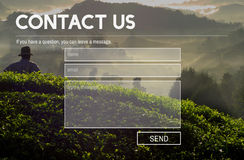 Contact Us Service Support Information Feedback Concept Royalty Free Stock Photo