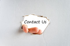 Contact us text concept Stock Images