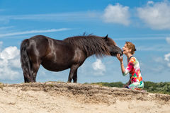 Contact woman and black pony Stock Image