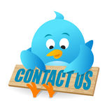 Contactez-nous bleu d'oiseau Photographie stock