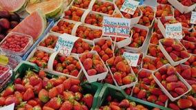 Contador com morangos e outros frutos Nas etiquetas de preço são escritos os nomes dos frutos - morango e video estoque