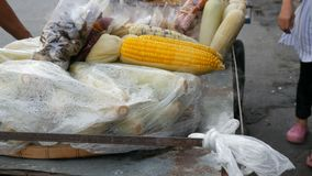 Contador con el maíz joven recientemente hervido del cual viene el vapor Contador con variedad de comida tailandesa Alimento asiá almacen de metraje de vídeo