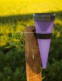 Contador de la lluvia en poste de madera Fotos de archivo