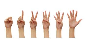 Contagem das mãos da mulher (números zero cinco) fotografia de stock royalty free