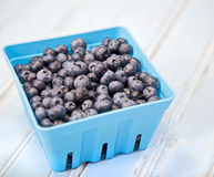 Container of blueberries Stock Images