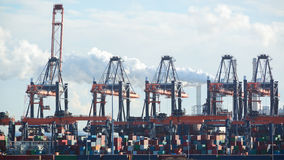 Container Cranes and Containers at a Dock Stock Images
