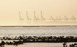 Container cranes on a foggy morning Royalty Free Stock Photos
