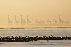 Container cranes on a foggy morning Stock Photo