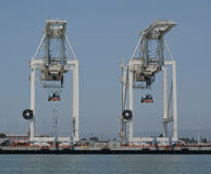 Container Cranes. In a port berth Royalty Free Stock Photography